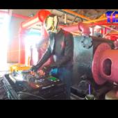 Avian Invasion on The DJ Sessions Silent Disco Sundays